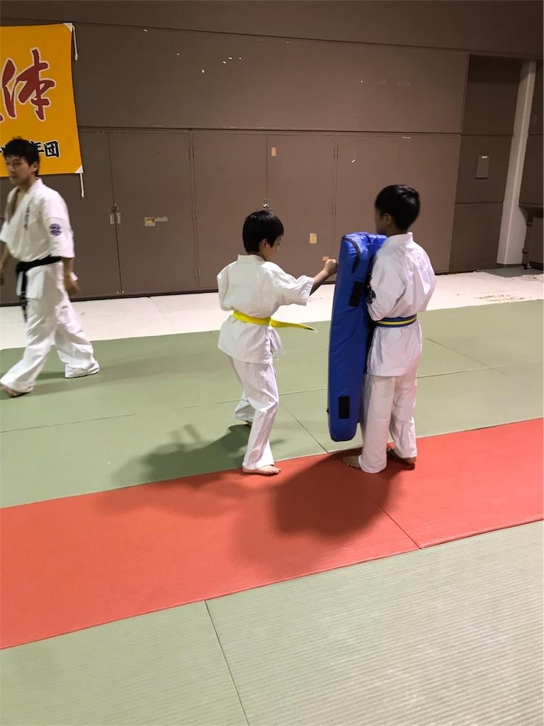 f:id:tatsuya_karate_mawasigeri_060110:20170524090021j:image