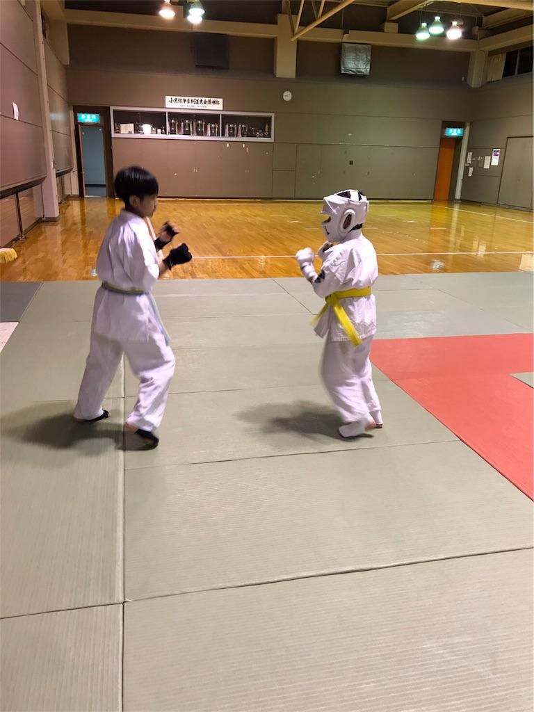 f:id:tatsuya_karate_mawasigeri_060110:20170524090139j:image