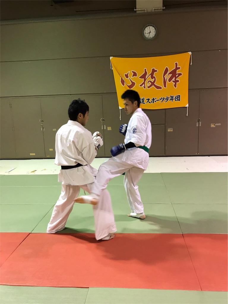 f:id:tatsuya_karate_mawasigeri_060110:20170524090229j:image