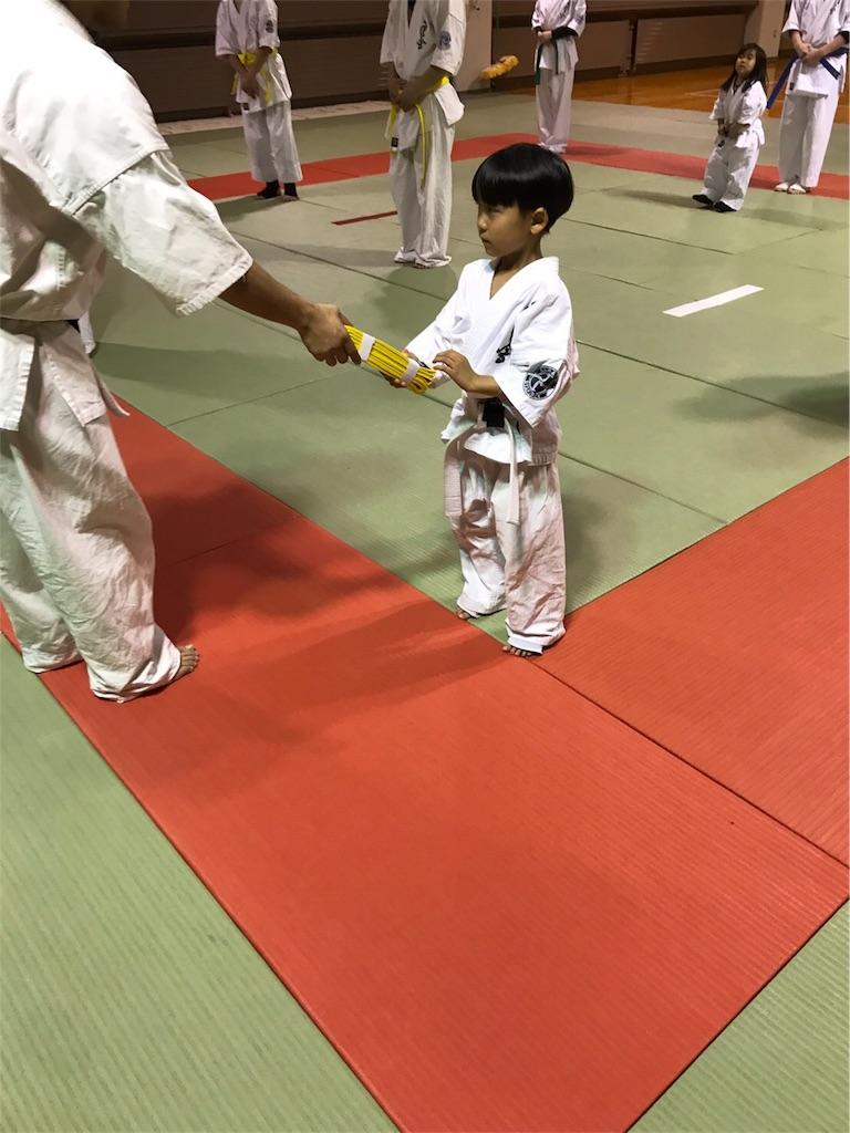 f:id:tatsuya_karate_mawasigeri_060110:20170529220307j:image