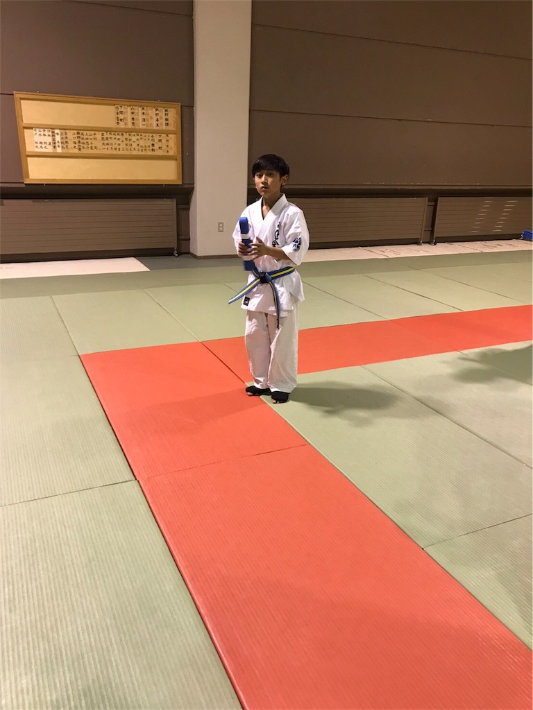 f:id:tatsuya_karate_mawasigeri_060110:20170529220341j:image