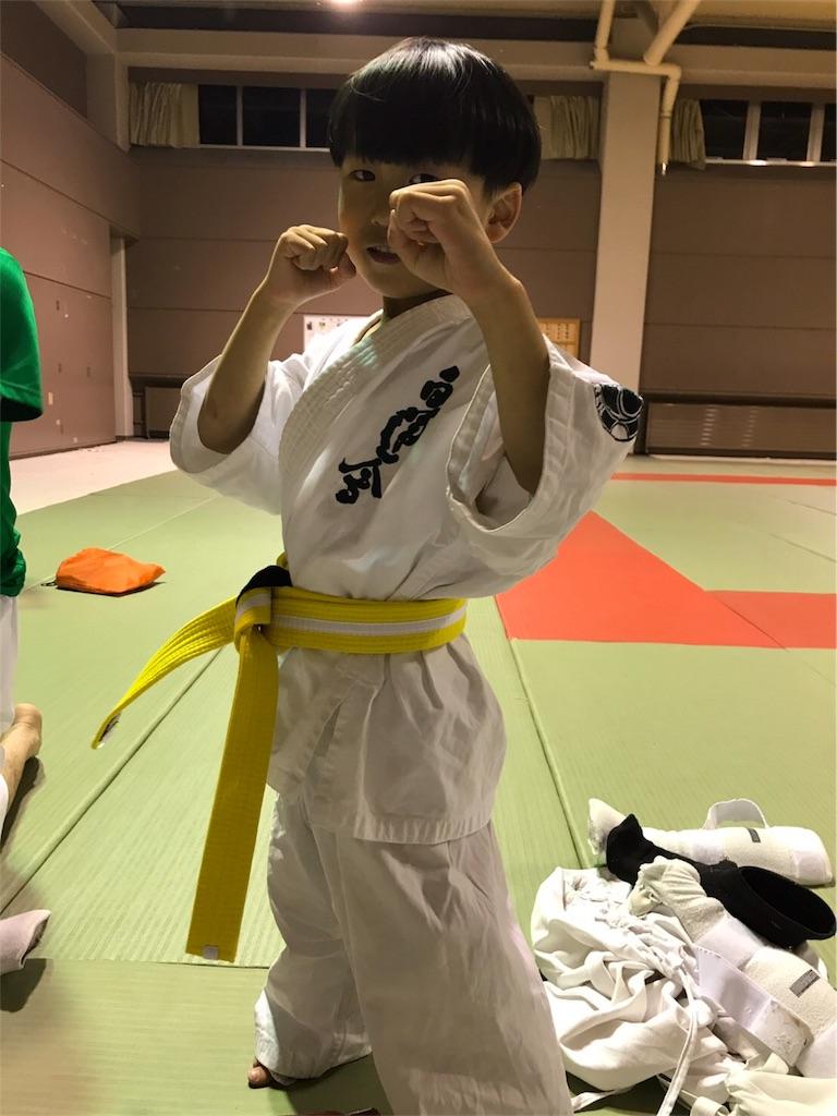f:id:tatsuya_karate_mawasigeri_060110:20170529220538j:image
