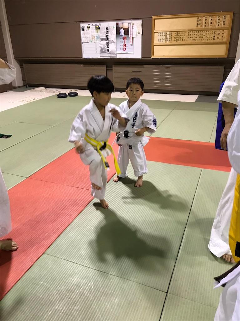f:id:tatsuya_karate_mawasigeri_060110:20170605224631j:image