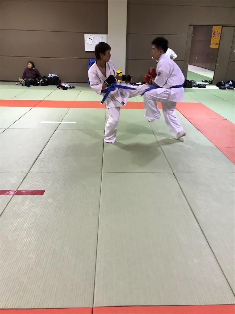 f:id:tatsuya_karate_mawasigeri_060110:20170605225242j:image