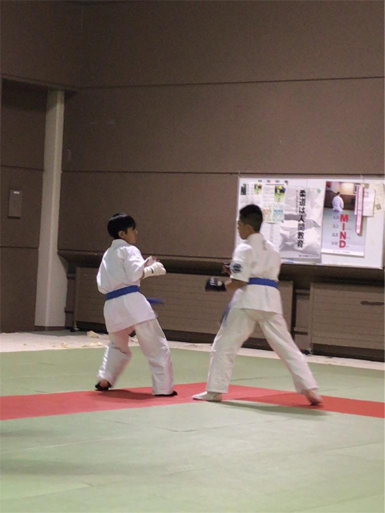 f:id:tatsuya_karate_mawasigeri_060110:20170613104224j:image
