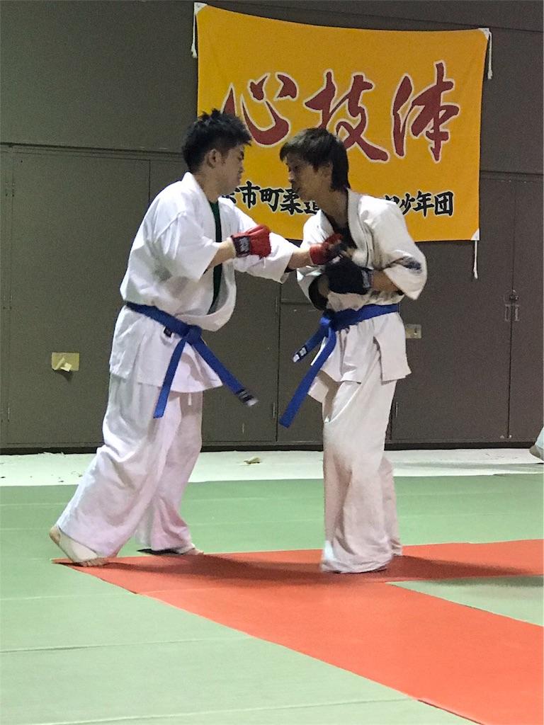 f:id:tatsuya_karate_mawasigeri_060110:20170614092409j:image