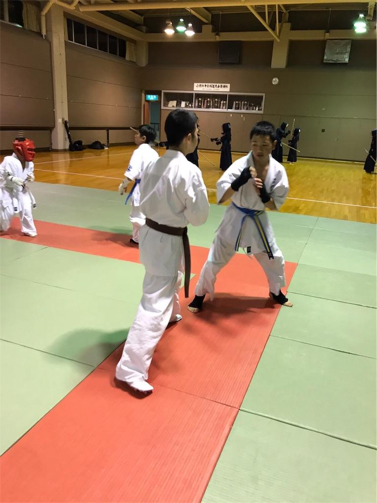 f:id:tatsuya_karate_mawasigeri_060110:20170617174805j:image