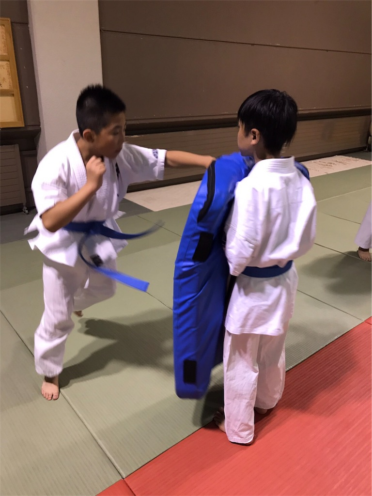 f:id:tatsuya_karate_mawasigeri_060110:20170617174848j:image