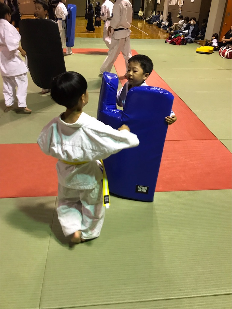 f:id:tatsuya_karate_mawasigeri_060110:20170617175512j:image