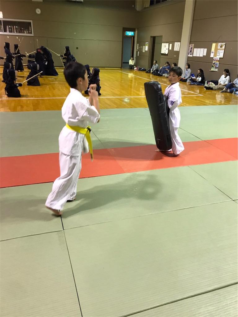 f:id:tatsuya_karate_mawasigeri_060110:20170617175724j:image