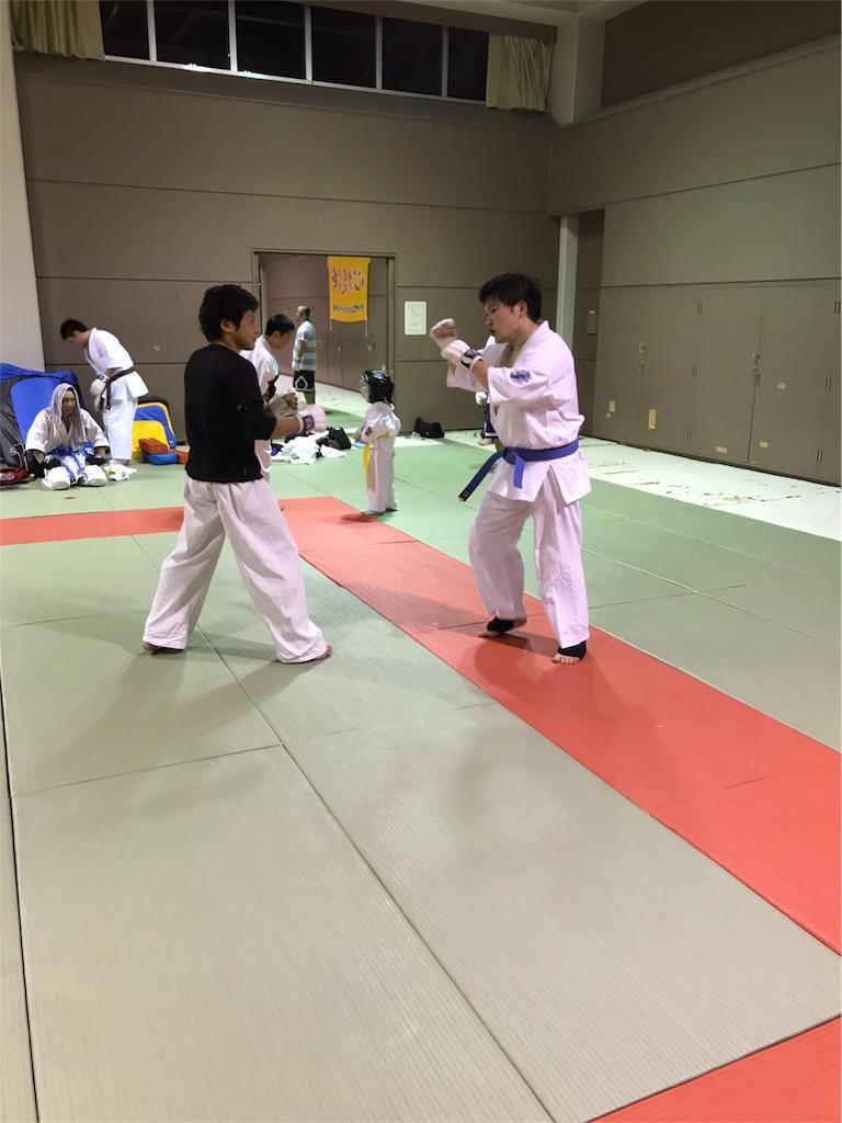 f:id:tatsuya_karate_mawasigeri_060110:20170620110853j:image