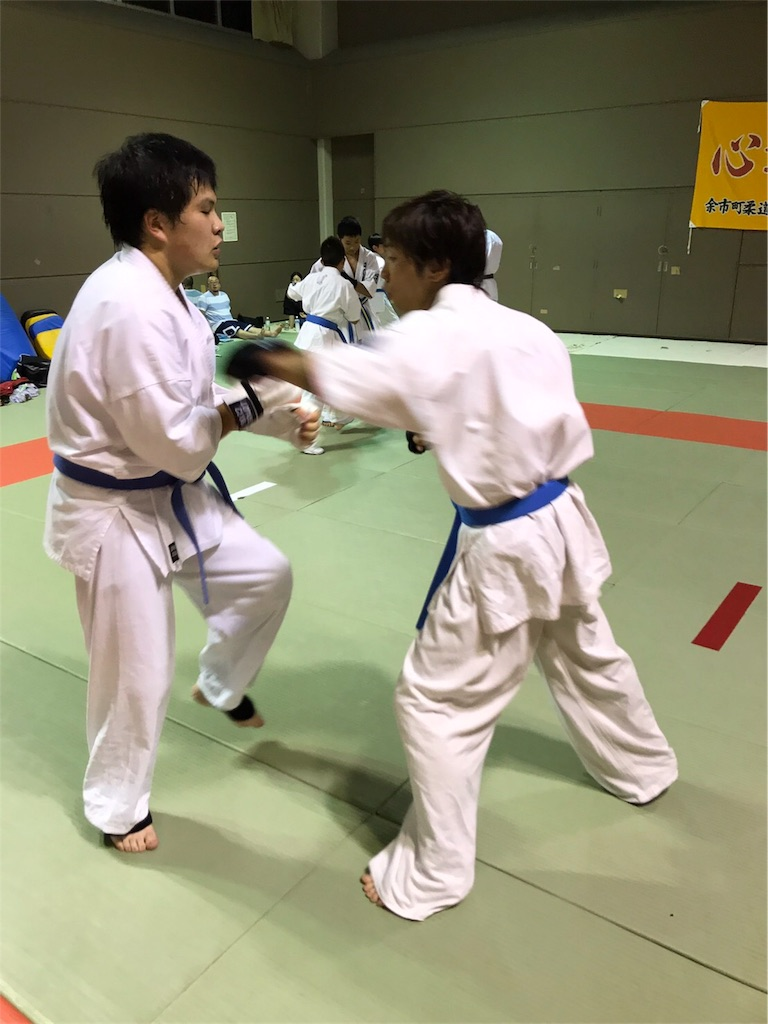 f:id:tatsuya_karate_mawasigeri_060110:20170620111341j:image