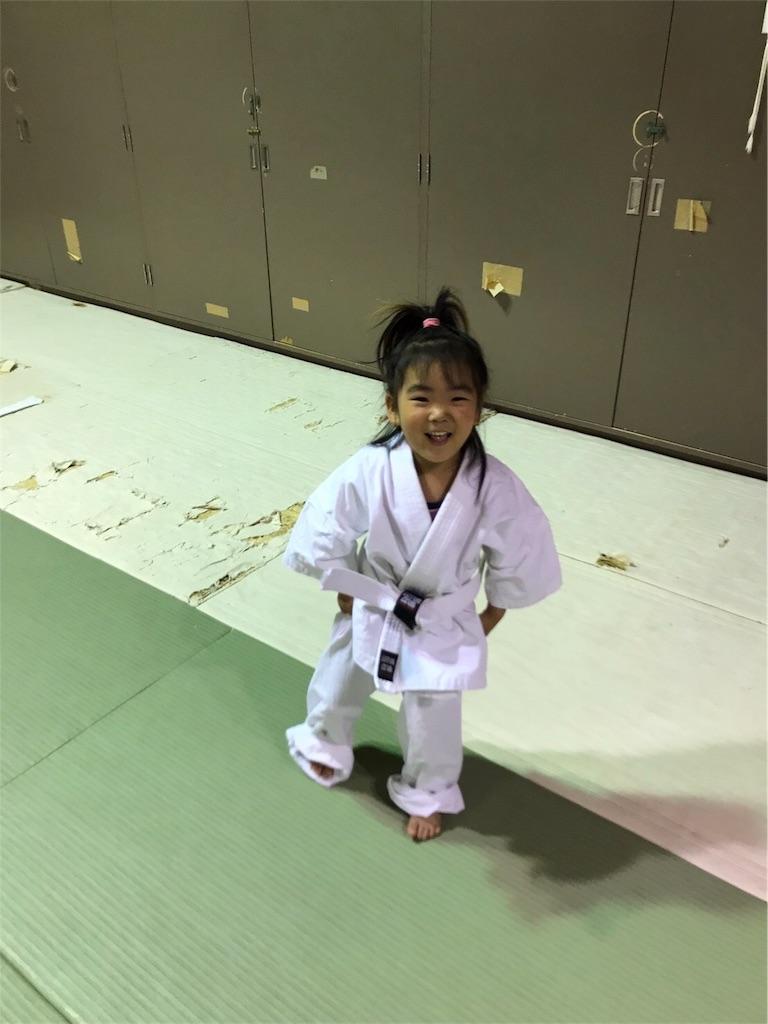 f:id:tatsuya_karate_mawasigeri_060110:20170620111512j:image