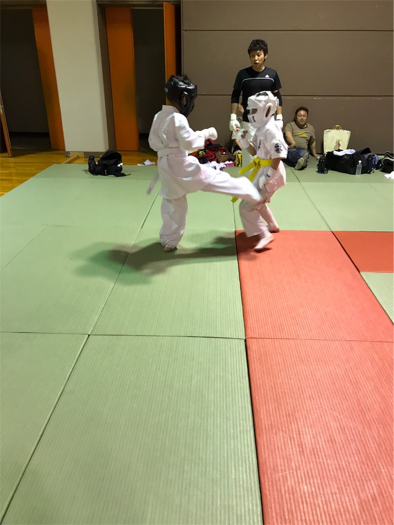 f:id:tatsuya_karate_mawasigeri_060110:20170620112239j:image