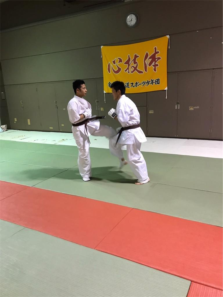 f:id:tatsuya_karate_mawasigeri_060110:20170620112302j:image