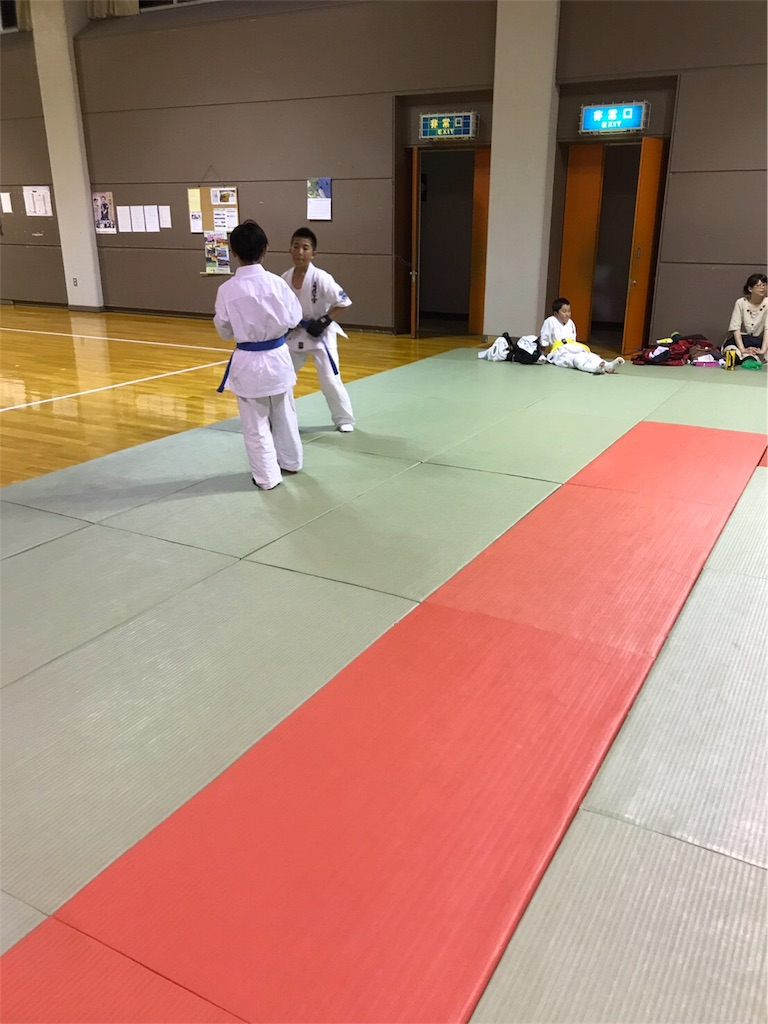 f:id:tatsuya_karate_mawasigeri_060110:20170620112316j:image