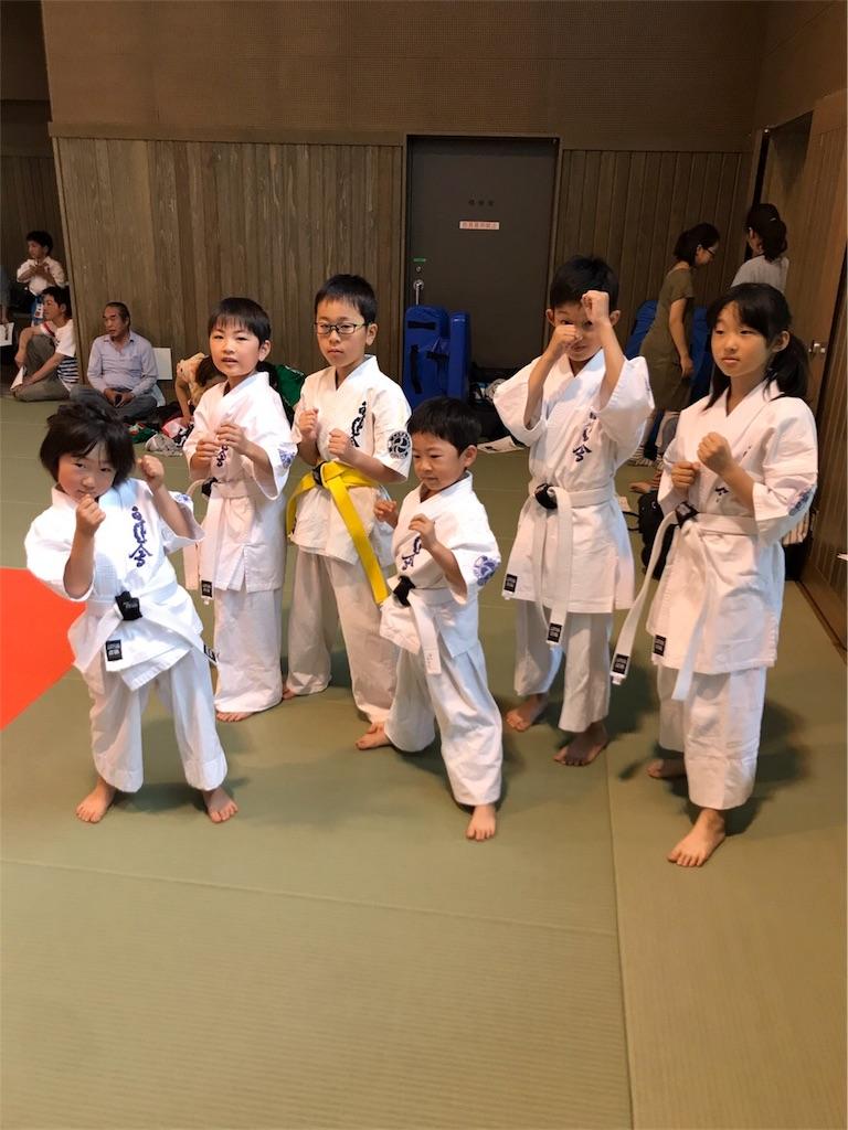 f:id:tatsuya_karate_mawasigeri_060110:20170702221825j:image