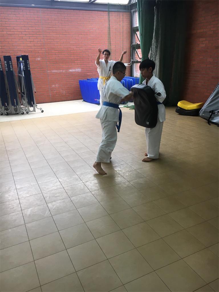 f:id:tatsuya_karate_mawasigeri_060110:20170702224156j:image