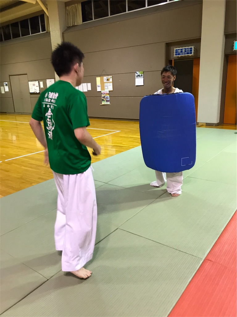 f:id:tatsuya_karate_mawasigeri_060110:20170710220525j:image