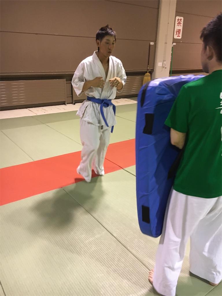 f:id:tatsuya_karate_mawasigeri_060110:20170710220631j:image