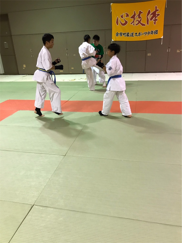 f:id:tatsuya_karate_mawasigeri_060110:20170710220722j:image