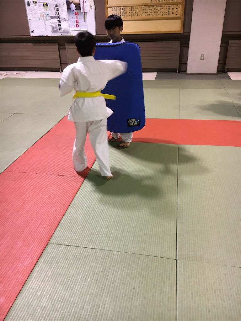 f:id:tatsuya_karate_mawasigeri_060110:20170710220911j:image