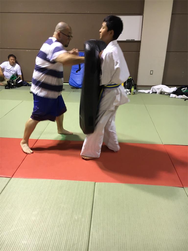 f:id:tatsuya_karate_mawasigeri_060110:20170710220958j:image