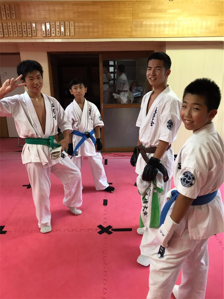 f:id:tatsuya_karate_mawasigeri_060110:20170724012341j:image