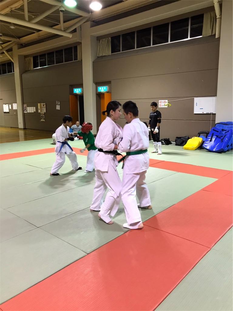 f:id:tatsuya_karate_mawasigeri_060110:20170806190031j:image