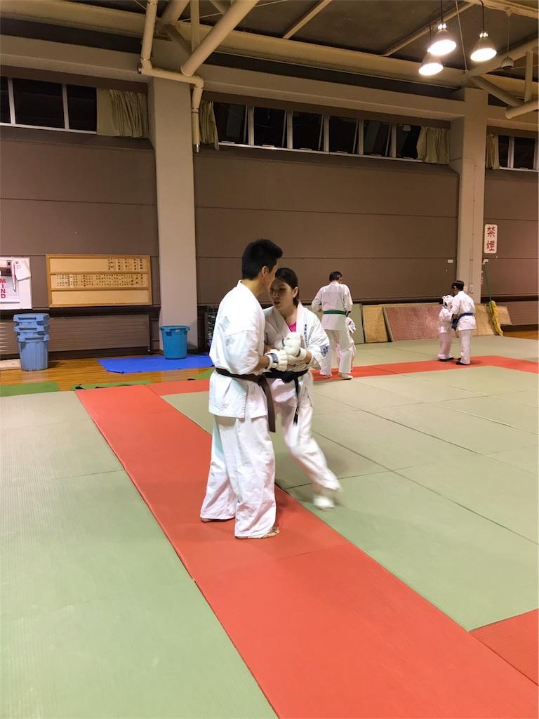 f:id:tatsuya_karate_mawasigeri_060110:20170806190053j:image