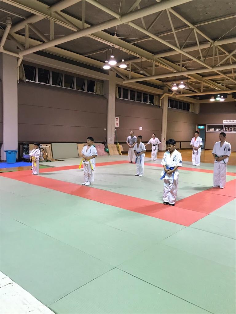 f:id:tatsuya_karate_mawasigeri_060110:20170806190108j:image
