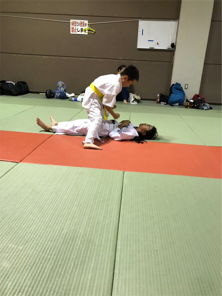 f:id:tatsuya_karate_mawasigeri_060110:20170825133943j:image