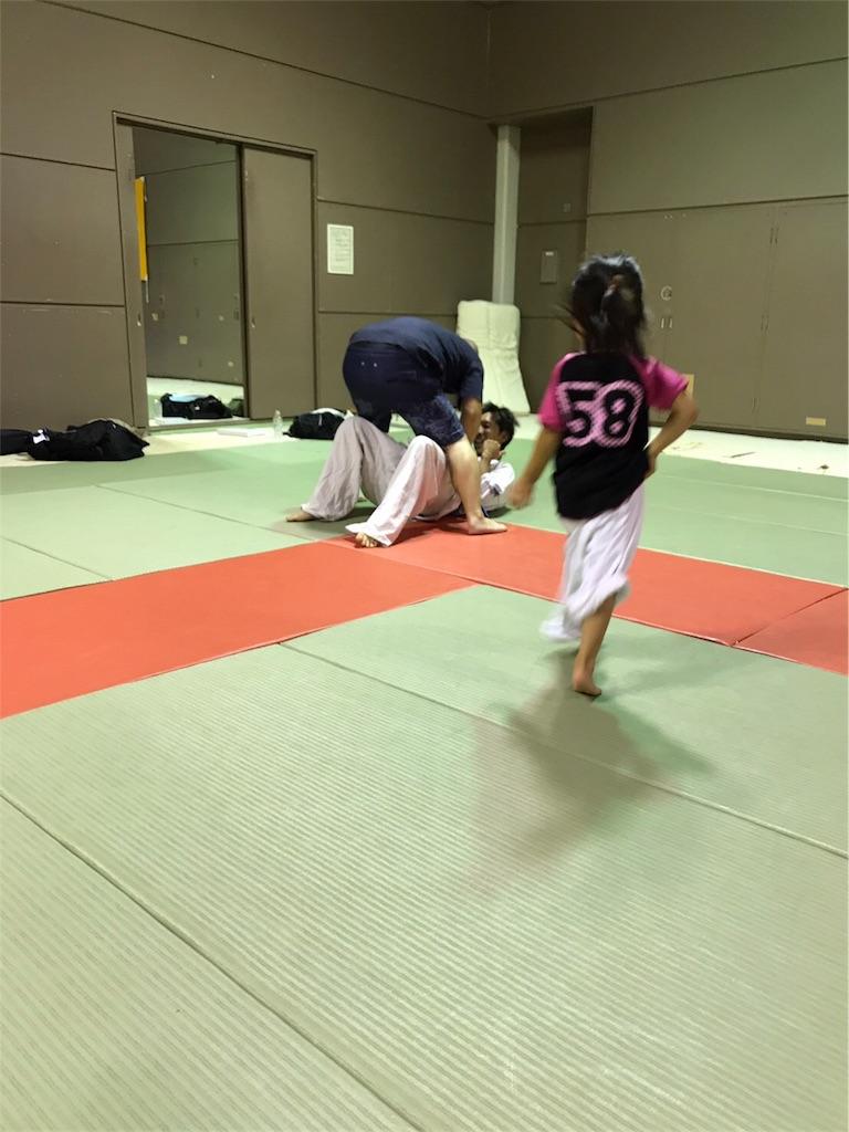 f:id:tatsuya_karate_mawasigeri_060110:20170825133952j:image