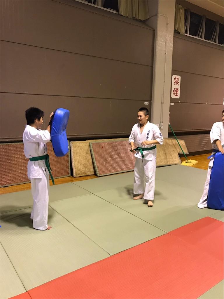 f:id:tatsuya_karate_mawasigeri_060110:20170826202137j:image