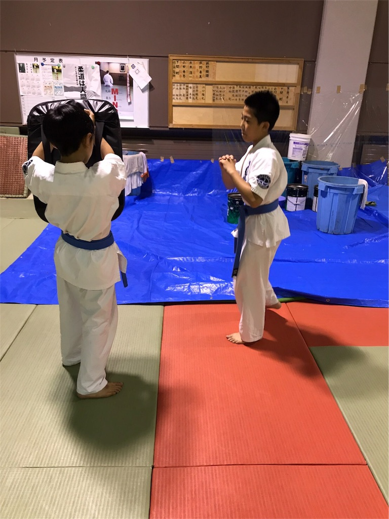 f:id:tatsuya_karate_mawasigeri_060110:20170826202151j:image