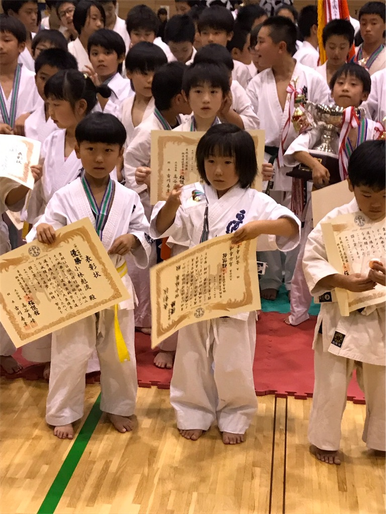 f:id:tatsuya_karate_mawasigeri_060110:20170828221516j:image