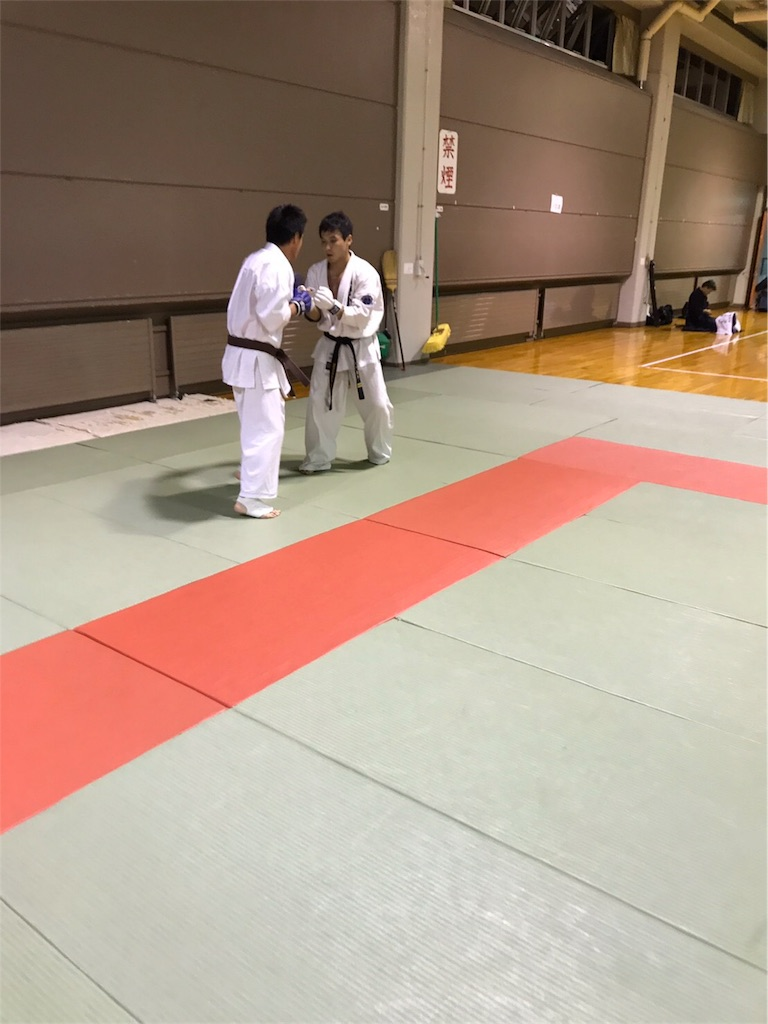 f:id:tatsuya_karate_mawasigeri_060110:20170918104138j:image