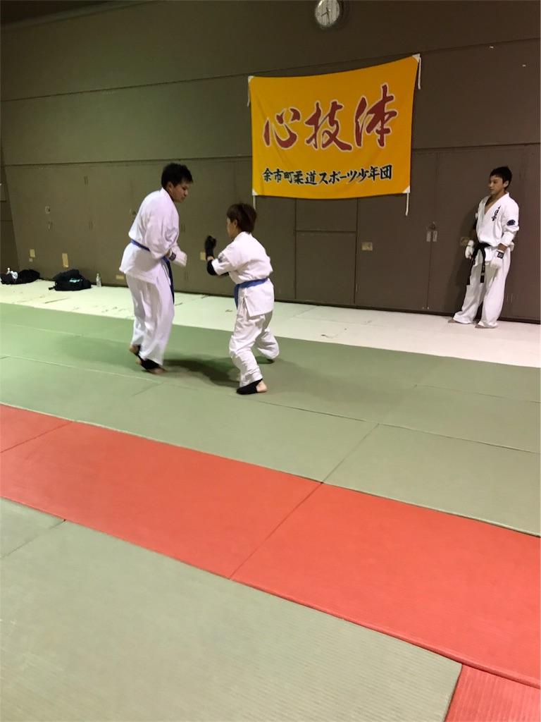f:id:tatsuya_karate_mawasigeri_060110:20170918104206j:image