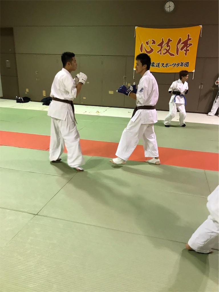 f:id:tatsuya_karate_mawasigeri_060110:20170918104228j:image