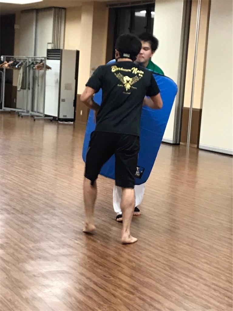 f:id:tatsuya_karate_mawasigeri_060110:20170922123057j:image