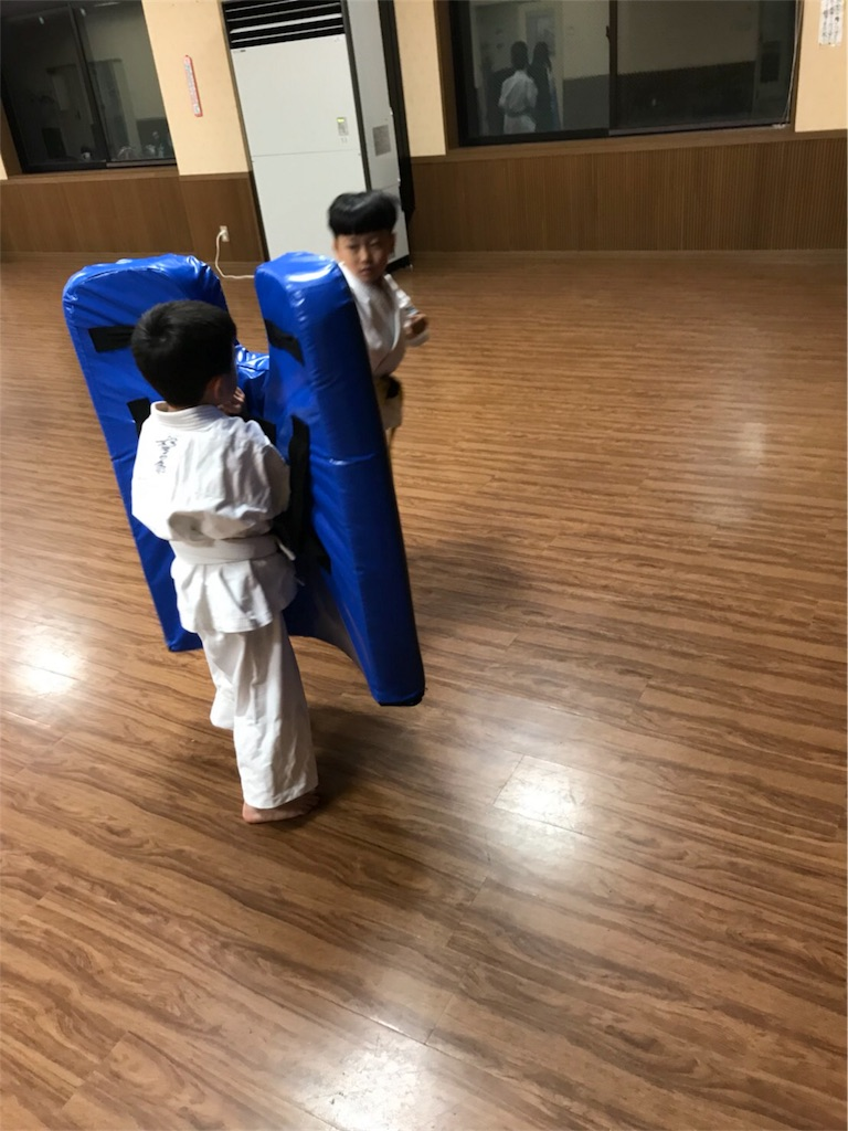 f:id:tatsuya_karate_mawasigeri_060110:20171011162914j:image