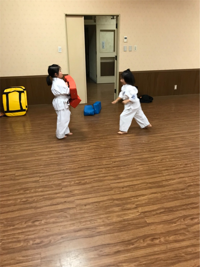 f:id:tatsuya_karate_mawasigeri_060110:20171011163051j:image