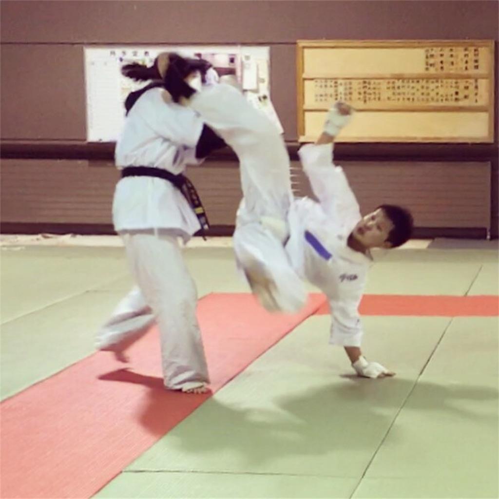 f:id:tatsuya_karate_mawasigeri_060110:20171024173738j:image