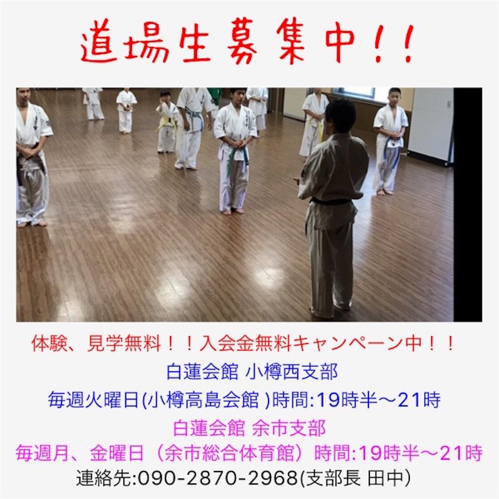 f:id:tatsuya_karate_mawasigeri_060110:20171024174952j:image
