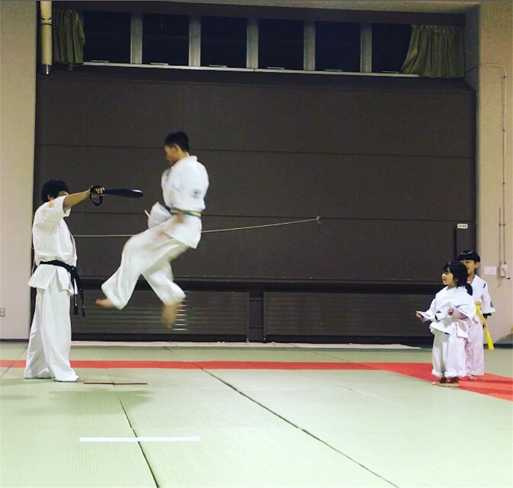 f:id:tatsuya_karate_mawasigeri_060110:20171106220623j:image