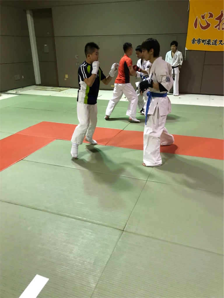 f:id:tatsuya_karate_mawasigeri_060110:20171201222450j:image