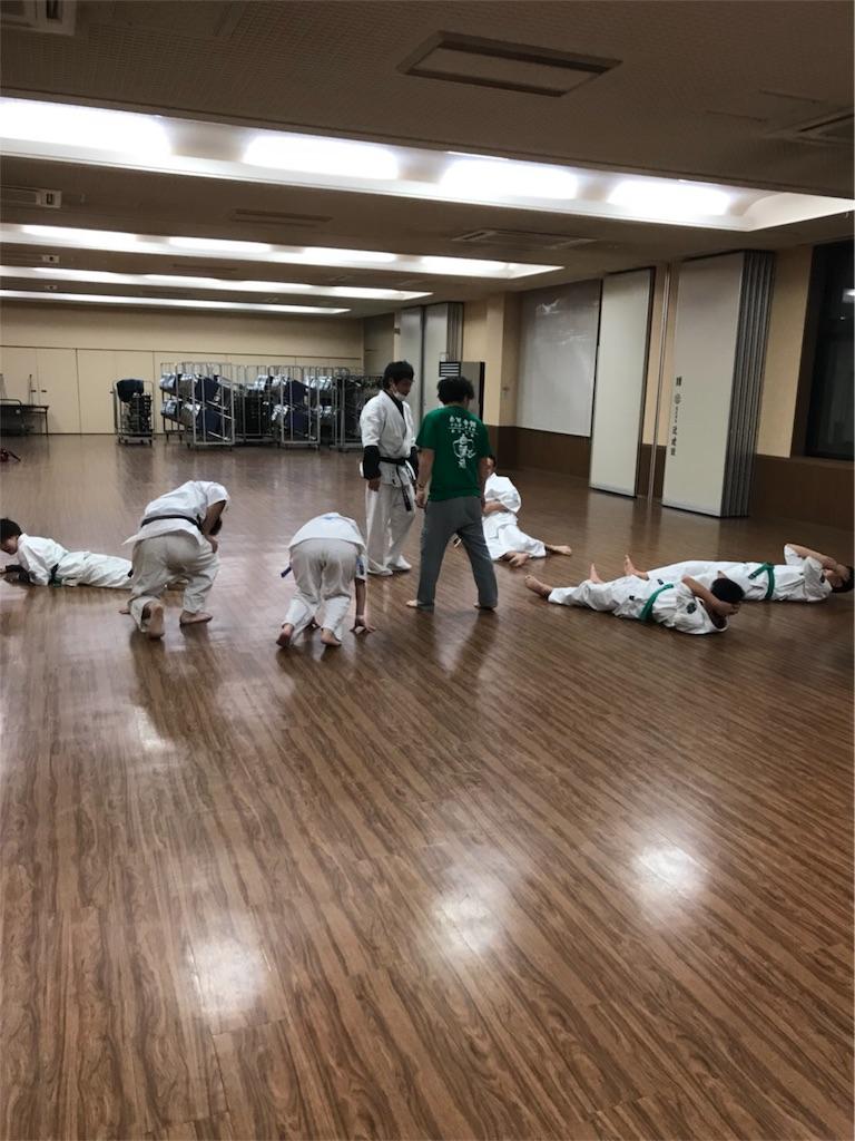 f:id:tatsuya_karate_mawasigeri_060110:20171201223052j:image