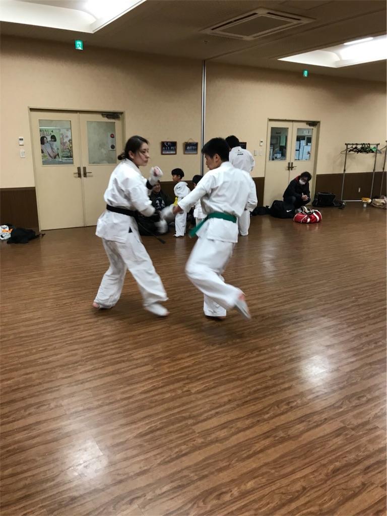 f:id:tatsuya_karate_mawasigeri_060110:20171223110623j:image