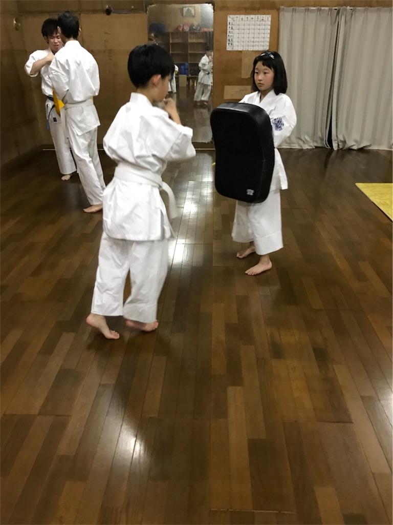 f:id:tatsuya_karate_mawasigeri_060110:20180110001643j:image