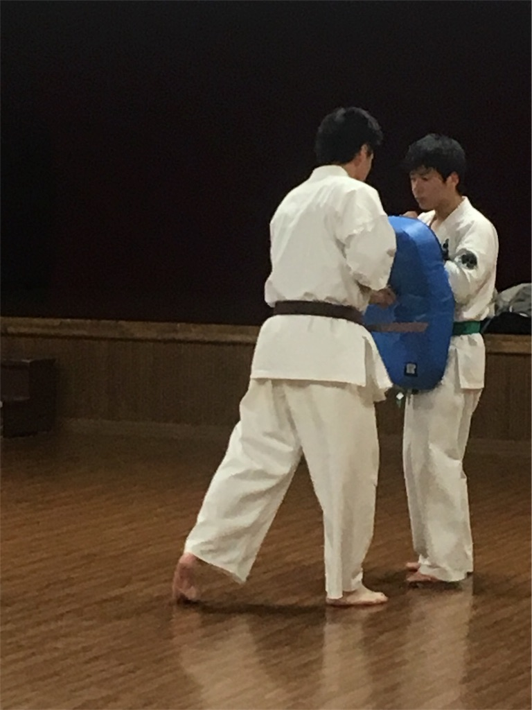 f:id:tatsuya_karate_mawasigeri_060110:20180110002048j:image